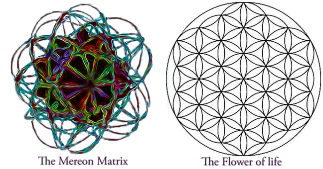 mm and the flower of life